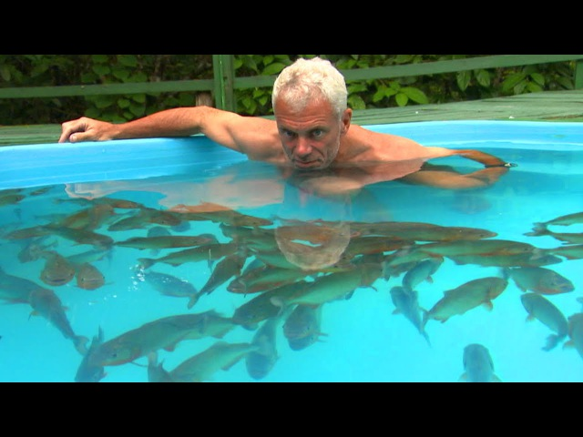 Swimming With Red Belly Piranhas - River Monsters