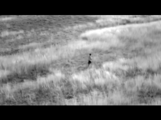 Apocalyptica- Romance (HD)