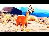 Каминандес - смешные короткие мультфильмы для детей от 2 лет