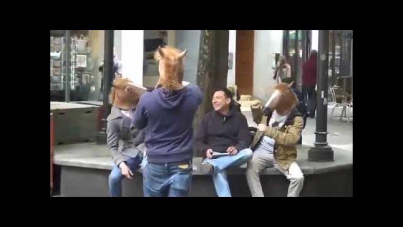 Маска коня троллинг - Horse Mask (голова коня - маска)