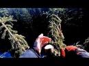 за новогодней елкой с шишками