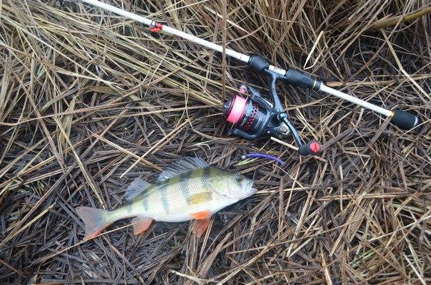 Куплю продам обменяю рыбалка