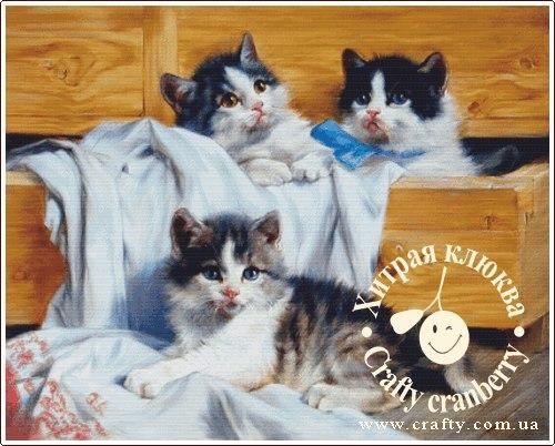 """Схема """"Котята, играющие в"""