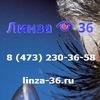 Линза 36