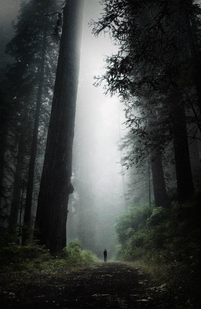 фото из альбома Алексея Губанова №3