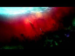 Tokyo Ghoul OP / Токийский монстр / Токийский гуль опенинг (Jackie-O Russian Full-Version)