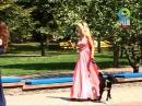 собаки в парке Жилибера