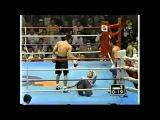 WHEN MMA FIGHTERS LOSE CONTROL PART 2 when mma fighters lose control part 2