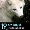 «Животные — не одежда», Новокузнецк