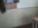 Ира шарит в потфеле Оли