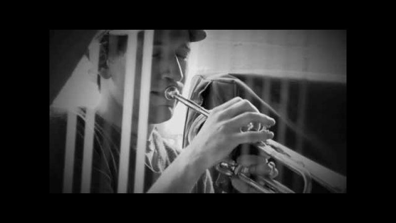 Matthew Halsall Colour Yes Video