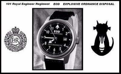 101 royal engineer regiment