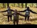 La bize her yer ankara maymun çok komik :D