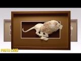 Бумажный зоопарк || PHOTO LAND (скульптуры из бумаги, объёмные скульптуры из бумаги, фото)
