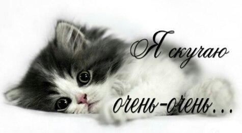 all давай без тебя я умру: