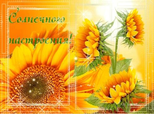 http://cs622826.vk.me/v622826216/27142/u2zCAJPH9MM.jpg