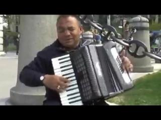 Уличные музыканты. Аккордеон - виртуоз - Мадрид