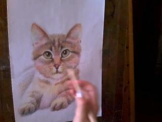 Симпатичный кот. Как нарисовать цветными карандашами.