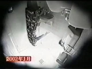 Мастурбация в японском туалете - скрытая камера