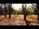 Darom Dabro - Город Ветров (Музыка : Needow\Denis Popov)