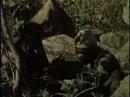 Rhodesia Unafraid (Part 2/2) -