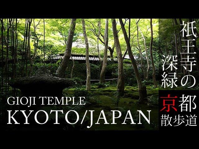 京都観光 祇王寺(Giouji temple in Kyoto,Japan)BGMで日本旅行 / そうだ京都行こう / 京都散歩道