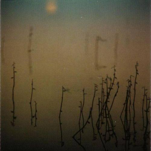 Tenhi – Hallavedet - The