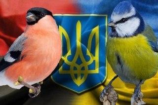 "ГПУ с ""боем"" получила доступ к телефонным переговорам Януковича перед побегом, - прокурор-криминалист - Цензор.НЕТ 8227"