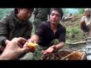 "Мисливці на ""божевільний мед"" - Hunting mad honey - documentary"