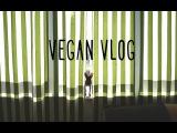 Веган VLOG/ про мёд, йога, шоколадная овсянка и соевое молоко