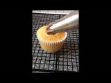 How to Pipe Butter Cream Swirls using the Wilton 1M and 2D