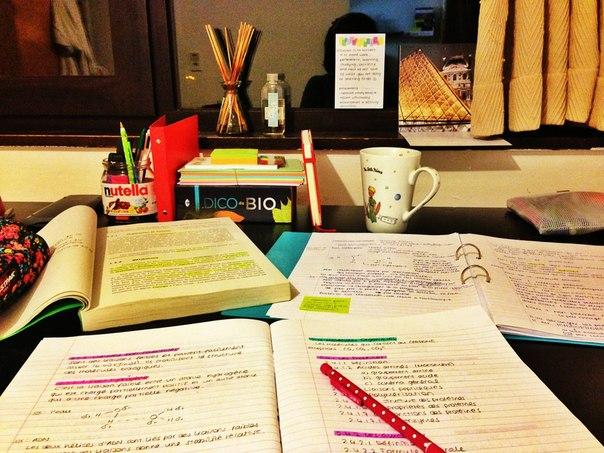 YGS Nasıl Kazanılır Evde Nasıl Çalışmalıyım Hazırlanmalıyım