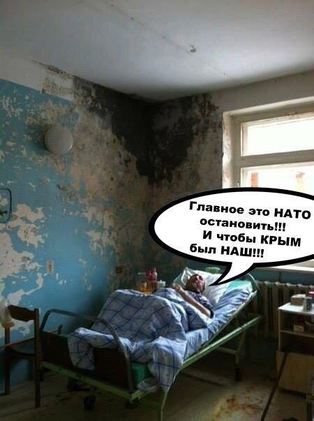 За сутки Нацполиция в Донецкой области изъяла у граждан 260 патронов, гранаты и взрывчатку - Цензор.НЕТ 6203