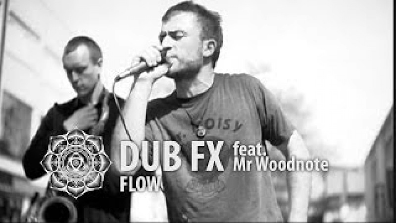 Dub FX 18042009 Flow feat. Woodnote