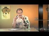 Оптические приборы | урок 2, биология 6 класс