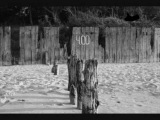 Zbigniew Preisner - Effroyables Jardins par Leszek Mozdzer (2 version piano)