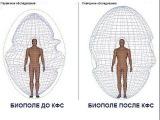 Работа КФС с Биоэнергетикой человека