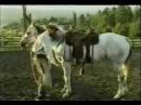 ПАТ ПАРЕЛЛИ Найди ключ к сердцу лошади с переводом
