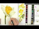 Shadows and yellow in watercolor with Anna Mason