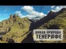 ОТДЫХ НА ТЕНЕРИФЕ Дикая природа национального парка Анага КАНАРСКИЕ ОСТРОВА