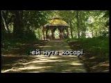 ВИЙШЛИ В ПОЛЕ КОСАРІ — караоке Українська народна пісня Ukrainian folk song karaoke