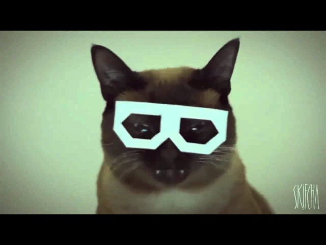 5 hours of Stereo Skifcha [Dubstep Hipster Cat]