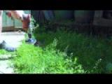 Триммер за 2 минуты газонокасилка