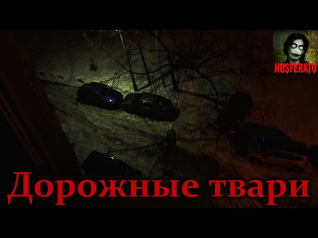 Истории на ночь - Дорожные твари