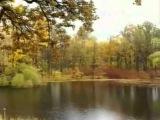 Галина Ненашева А лес стоит загадочный