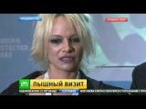 Памела Андерсон произвела фурор на экономическом форуме во Владивостоке