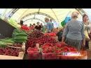 Москва предложила подмосковному совхозу места на рынках для продажи клубники