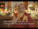 Discovering_Buddhism_10 Kak_razvit_bodhichittu