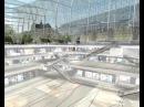 MARC MIMRAM ARCHITECTE PROJET CARREAU DES HALLES PARIS