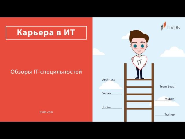 Какими будут обзоры IT-специальностей?